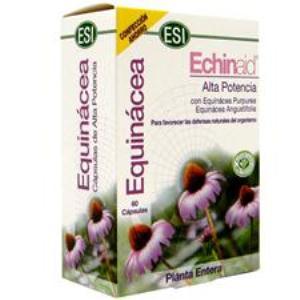 ECHINAID 60cap. de TREPATDIET-ESI