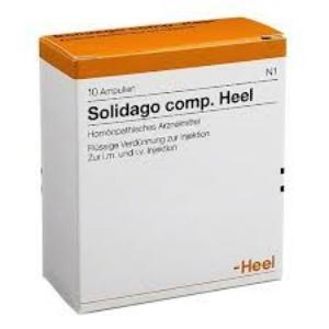 SOLIDAGO COMP. 5 Amp. 2,0 de HEEL